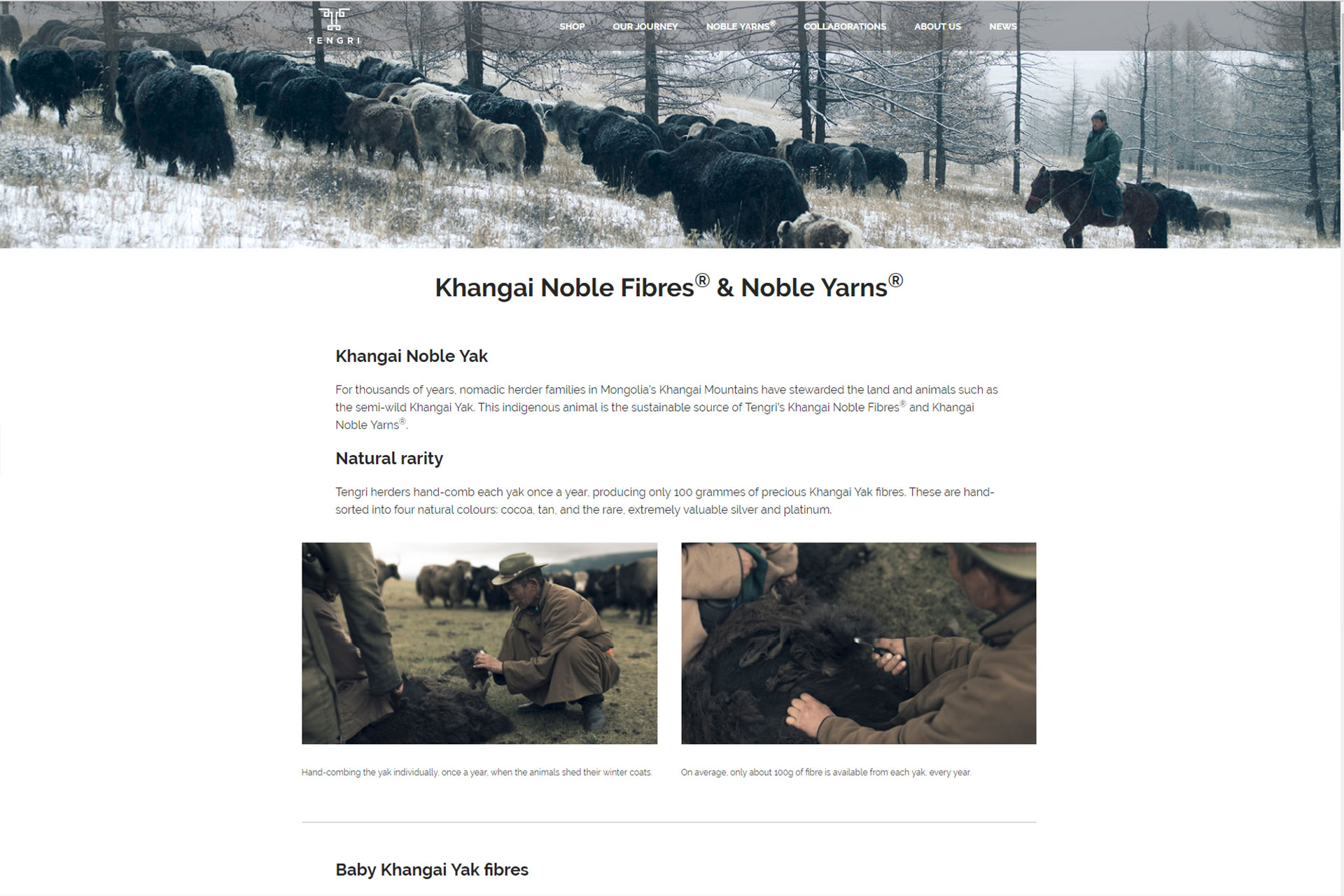 Tengri – SEO and Systems